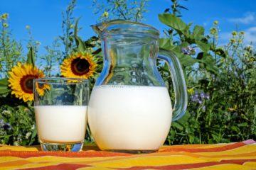Ktoré mlieko je to naj? Kravské, kozie, či ovčie?