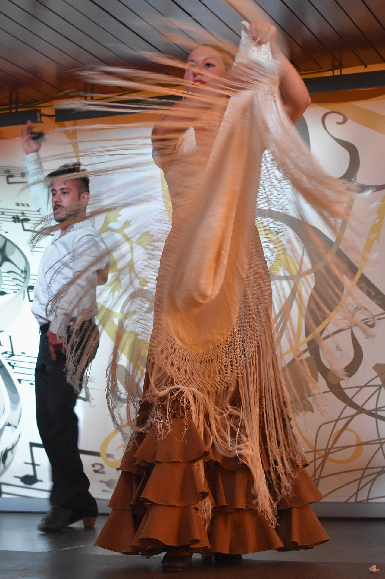Flamenco (Zdroj:https://pixabay.com/sk/flamenco-tanec-oble%C4%8Denie-%C4%BEudia-1641315/)
