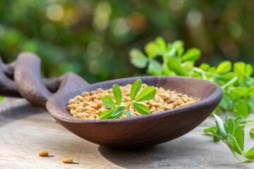 Senovka grécka zlepšuje trávenie, má protizápalový účinok a pomáha pri chudnutí